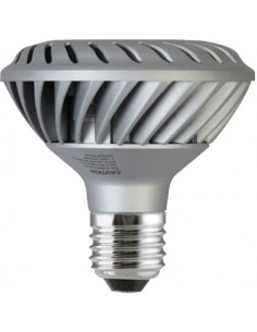 Lampe led par 30 e27  e27 puis. (w) 10 lumen 500