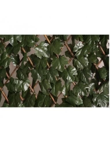 Treillis osier extensible à feuilles vg 0,50 x 1,50