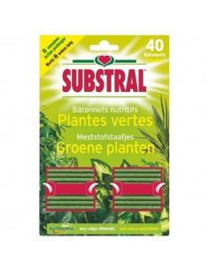 Bâtonnet nutritif plantes vertes 40 pièces
