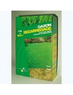 gazon regarnissage boite 1 kg ref.124511